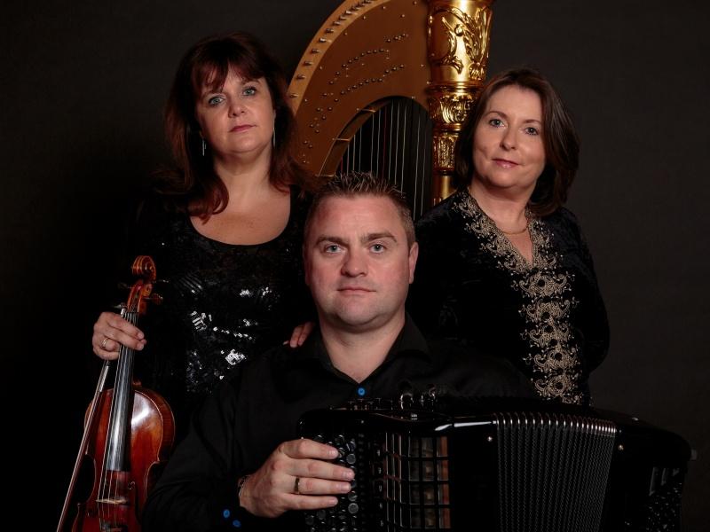 Trio Phalaena